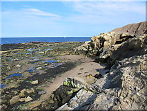 NZ3671 : Tynemouth North Point by Mike Quinn