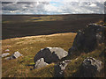 SD6360 : Gritstone outcrops, Hawkshead by Karl and Ali