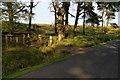 SD6153 : Access to access land near Threaphaw Clough by Bill Boaden