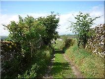SE0064 : High Lane to Grassington by Carroll Pierce