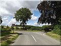 TM3189 : Pheasants Walk, Earsham by Adrian Cable