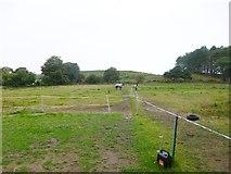 SY8086 : Blacknoll, paddocks by Mike Faherty