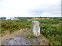SY8086 : Blacknoll Hill, trig point by Mike Faherty