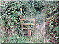 SJ3660 : Footpath, Stile and Brambles near Dodleston by Jeff Buck