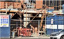 J3373 : Nos 53-57 Botanic Avenue, Belfast (August 2014) by Albert Bridge