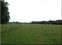 SK1831 : Flat Grazing Land near Foston by Jonathan Clitheroe