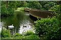 TQ1876 : Kew Gardens by Peter Trimming