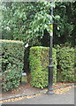 SK5903 : Victoria Park Vicinity, Leicester LE1 by David Hallam-Jones