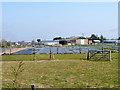 TQ2861 : Smallholdings, Little Woodcote Estate by Robin Webster