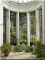 SW8339 : The eastern end of the conservatory at Trelissick House by Rod Allday