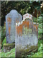 SW8435 : Lichen covered gravestones at St Just in Roseland by Rod Allday
