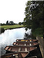 TM0733 : River Stour & Rowing Boats awaiting hire by Adrian Cable