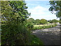 SJ6084 : Signpost on Delamere Way near Bellfield Farm by Raymond Knapman