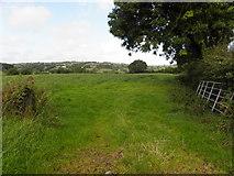 H6058 : An open field, Tullylinton by Kenneth  Allen
