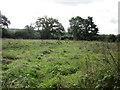 SJ5047 : Footpath to Millmoor Farm by Jeff Buck