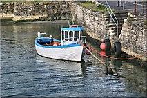 D0345 : 'Irish Rover' in Ballintoy Harbour by Bob Jones