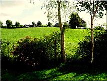 H6156 : Tullybyran Townland by Kenneth  Allen