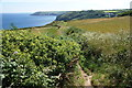 SW7214 : The South West Coast Path near Kildown Point by Bill Boaden