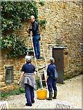 SP2429 : Harvesting the pear crop (1), Chastleton House, Chastleton, Oxfordshire by Brian Robert Marshall