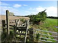 NZ1496 : Stile and public footpath by Russel Wills