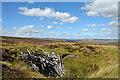 SE0196 : Old mine shaft near Gibbon Hill by Trevor Littlewood