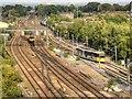 SJ8499 : Victoria East by David Dixon