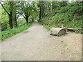 SX0045 : Georgian Ride (6) by Peter Holmes
