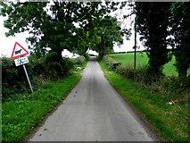 H6256 : Tullywinny Road by Kenneth  Allen
