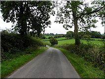 H6355 : Tullywinny Road, Tullywinny by Kenneth  Allen