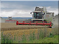 TA0614 : Combining on Elsham Wolds by David Wright