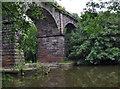 SJ6470 : River Weaver rail bridge by Stephen Burton