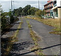 SK7518 : Weed-covered disused railway track, Melton Mowbray by Jaggery