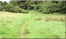 J3267 : Path, Edenderry village, Belfast - September 2014(1) by Albert Bridge