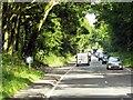 SU4963 : A339, Layby near Greenham Common by David Dixon