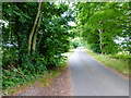 SU7448 : Looking southwards on Wood Hill Lane by Shazz
