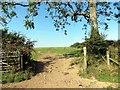 SN0422 : Llwybr Parc y Delyn Path by Alan Richards