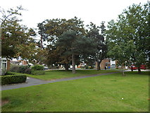 TM1542 : Open area on Stoke Park Drive by Hamish Griffin