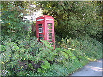 SS6744 : Nearly hidden Country Phone Box by Josie Campbell