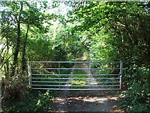 TQ5571 : Darenth Road South, Darenth by Chris Whippet