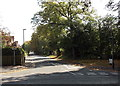 SJ8480 : Holly Road North, Wilmslow by Jaggery