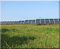 TF8938 : New solar farm at Egmere by Evelyn Simak