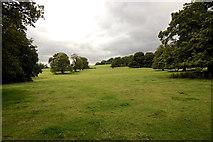 ST5071 : Tyntesfield Park by Anthony O'Neil