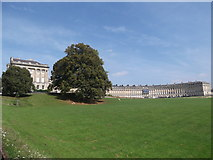 ST7465 : Royal Crescent from Royal Crescent Gardens, Bath by Robin Sones