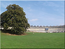ST7465 : Royal Crescent Gardens and Royal Crescent, Bath by Robin Sones