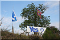 NJ2750 : Yes Campaign Sign by Anne Burgess