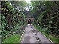 SE2800 : Thurgoland tunnel ahead by Steve  Fareham