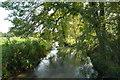 SP2013 : River Windrush at Barrington by John Winder