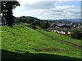 NS2974 : Grassy embankment at Kilmacolm Road by Thomas Nugent