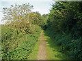 SU9945 : Footpath beside the sewage works by Alan Hunt