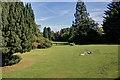 SD3596 : The grounds of Esthwaite Lodge by Mick Garratt